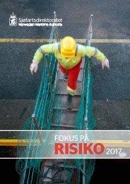 Fokus på risiko 2017 norsk rapport
