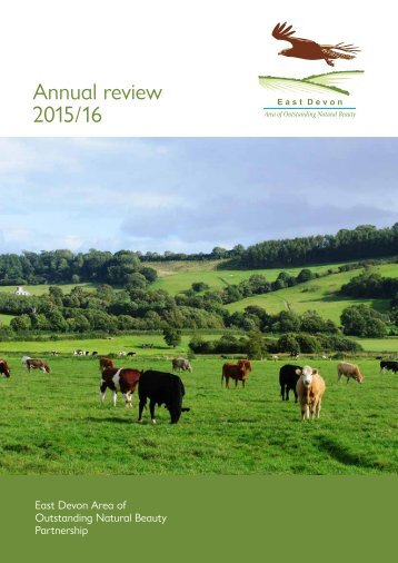 Annual review 2015 / 16