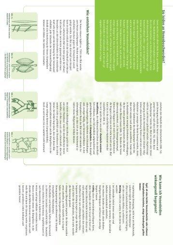 12065 • Info Venosoft dt. - MEDiDOR/SISSEL