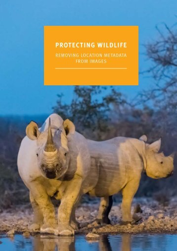 PROTECTING WILDLIFE