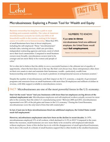 Microbusinesses Exploring a Proven Tool for Wealth and Equity
