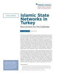 Islamic State Networks in Turkey