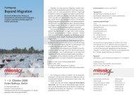 Beyond Migration - Caritas-Europa