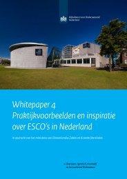 Whitepaper 4 Praktijkvoorbeelden en inspiratie over ESCO's in Nederland