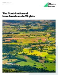 The Contributions of New Americans in Virginia