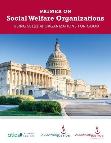 Social Welfare Organizations