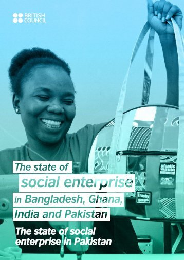 The state of social enterprise in Pakistan