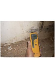 Mold Detection Fort Lauderdale