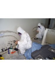 Mold Testing Fort Lauderdale