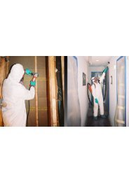 Mold Inspection Companies Miami