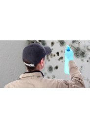 Mold Removal Miami Beach