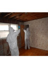 Mold Remediation Miami Beach