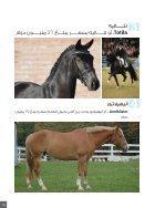 الحادي عشر - النسخة الإماراتية - Page 6