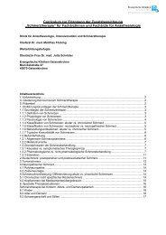"""Curriculum zur Erlangung der Zusatzbezeichnung """"Schmerztherapie ..."""