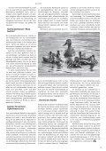 Gleichberechtigung der gleichgeschlechtlichen Ehe - Seite 5