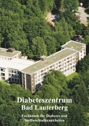 diabeteszentrum bad lauterberg lemmers