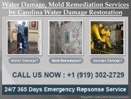 Water Damage, Mold Remediation Services by Carolina Water Damage Restoration