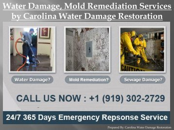 Water Damage, Mold Remediation Services by Carolina Water Damage Restoration