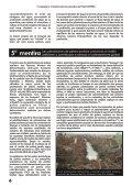 PALMA ACEITERA - Page 6