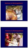 Narkose im Rettungsdienst - Seite 4