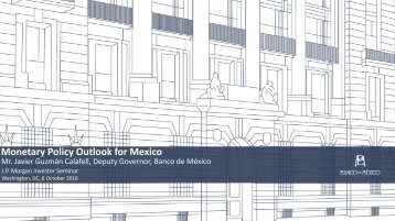 Monetary Policy Outlook for Mexico