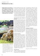 Bollettino ProSpecieRara Retrospettiva 2012 - Page 6