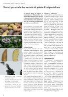 Bollettino ProSpecieRara Notizie della regione - Page 6