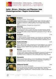Apfel-, Birnen-, Kirschen und Pflaumen- bzw ... - Pro Specie Rara