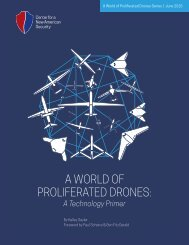 A WORLD OF PROLIFERATED DRONES