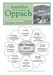 Der Sommer 2008 - Oppach
