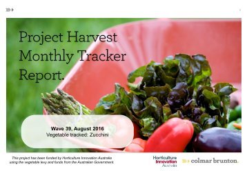 Wave 39 August 2016 Vegetable tracked Zucchini