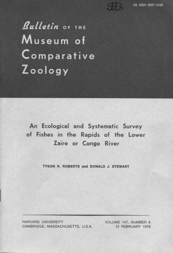 original description - AMNH Research Sites