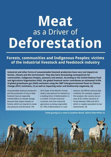 Meat Deforestation