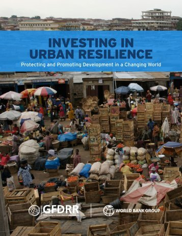 INVESTING IN URBAN RESILIENCE