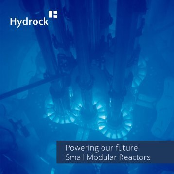 Powering our future Small Modular Reactors