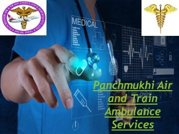 Panchmukhi Air and Train Ambulance Services Pondicherry Amritsar