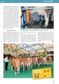 FLECKVIEH AUSTRIA_OKTOBER 2016 - Seite 7