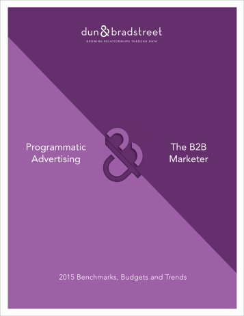 Programmatic Advertising The B2B Marketer