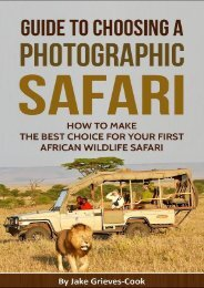 How To Make The Best Choice For Your African Safari
