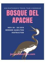 Bosque Del Apache 2016 Photography Travel Tour and Workshop by Jerome Hamilton