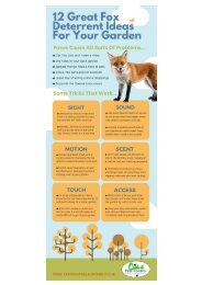 DISCOURAGING FOXES FROM YOUR GARDEN – SOME GREAT TIPS AND TRICKS THAT ALWAYS WORK