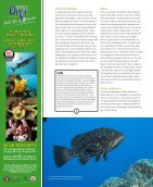 sw42_Ocean World - Seite 6