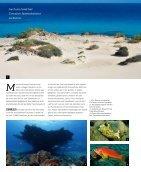sw38_Fuerteventura - Seite 2