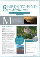 Birding in Mallorca - Page 2