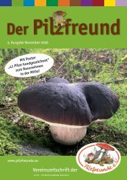 Der Pilzfreund - Ausgabe 3