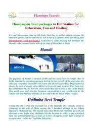 Amazing And Terminal Honeymoon tour packages