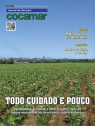 Jornal Cocamar Novembro 2015