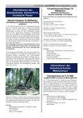 Vollvermietung erreicht! - Stadt Werdau - Page 3