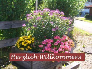 Blumenschmuck 2016