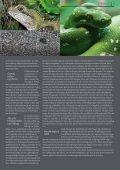 Industrielle Massentierhaltung und ihre Folgen - TierSchutzVerein ... - Seite 7